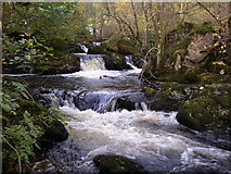 NY4020 : Rapids on the Aira Beck, Watermillock township, Matterdale CP by Humphrey Bolton