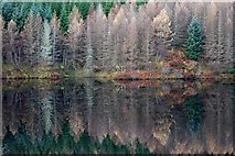 NM8415 : Reflections on Oude Dam by Patrick Mackie