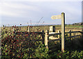 NT9448 : Public footpath signpost by Walter Baxter