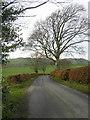 NY0683 : Minor Road Near Broomrigg by Iain Thompson