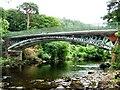 SH7955 : Betws Y Coed iron bridge by RAY JONES