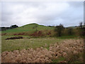 SN7369 : Pasture and rough grassland in Glan Marchnant by John Lucas