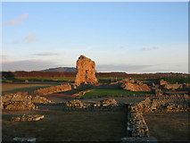 SJ5608 : Wroxeter by David Stowell