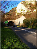 TQ4210 : Southern Entrance, Cuilfail Tunnel by Simon Carey
