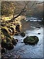 SX5481 : Tavy and stepping stones by Derek Harper