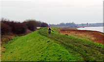 TA0623 : The Lone Christmas Day Cyclist by David Wright