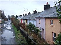 SN0729 : The Terrace, Rosebush by ceridwen