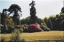 SH4555 : Ornamental gardens at Plas Glynllifon by Eric Jones