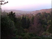 NU0702 : New Year over Cragside by Derek Harper
