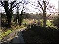 NU0900 : The lane from Healey by Derek Harper