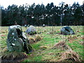 NN7446 : Fortingall Stone Circles by Lisa Jarvis