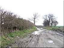 SU2991 : Long Lane by Jonathan Billinger