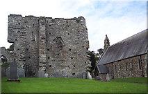 SN1645 : The Abbey Ruins at St Dogmaels by Maigheach-gheal