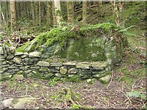 NX4858 : Stone seat, Balloch Wood by Richard Webb