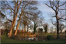 TL8063 : Moat of Little Saxham Hall by Bob Jones