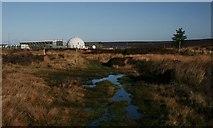 SE8696 : Public Bridleway, Loose Howe Rigg by Mick Garratt