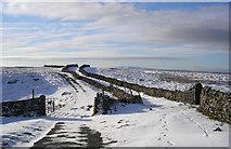 SD8283 : Cold Keld Gate by John Illingworth