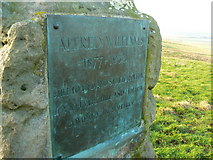 SU1576 : Richard Jefferies/Alfred Williams memorial stone by Brian Robert Marshall