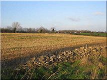 ST8079 : Farmland near the M4 by Phil Williams
