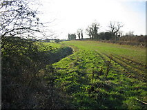 ST8079 : Stream near Acton Turville by Phil Williams
