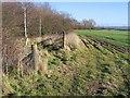 SJ4359 : Footpath to Lea Newbold Farm by John S Turner