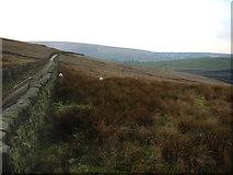 SD9810 : Ox Hey Lane, Denshaw by Martin Clark