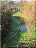 TQ3783 : A subsidiary channel of the Old River Lea, Marshgate Lane by Rachel Bowles