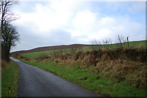 NX0983 : Road out by Neil Cunningham