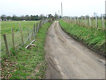 TR1859 : Well Lane, looking SE by Nick Smith