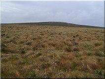NS5846 : Drumduff Hill by Mark Nightingale