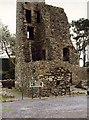 J5262 : Sketrick Castle by Wilson Adams