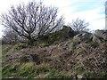 SK4613 : Rock outcrop on Bardon Hill by Roger Cornfoot
