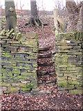 SE1421 : Steps off Bowling Alley, Rastrick by Humphrey Bolton