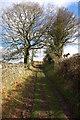 SO2920 : Track to Bryn Arw by Philip Halling