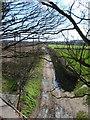 SO8790 : Footpath to Wall Heath by Gordon Griffiths