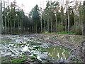 NT9542 : Mud by Lisa Jarvis