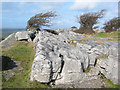 SD3979 : Limestone pavement and stunted trees by Espresso Addict