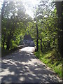 NN9162 : The bridge over the river Garry at Killiecrankie by walter young