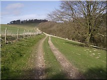 SU4456 : Upper Woodcott Down by Graham Horn