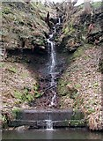 SD9726 : Rochdale Canal, Callis Wood by Paul Glazzard