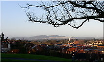 SO8453 : The Malverns from Fort Royal by Andrew Darge