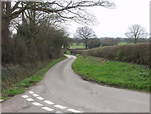 SJ3335 : Rural lane at Wigginton by John Haynes