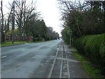 TA2904 : Humberston Avenue by John Beal