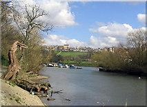 TQ1773 : River Thames at Glover's Island by Stephen Williams