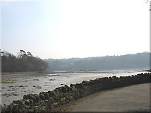 SH5571 : View south-east from the Church Island causeway by Eric Jones