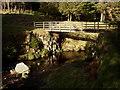 NT8712 : Footbridge at Fairhaugh. by Kenneth   Ross