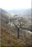 SK1695 : Upper Derwent Valley from Oaken Bank by Dave Dunford