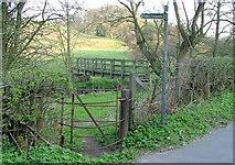 SJ8860 : Kissing gate and footbridge by Neil Lewin