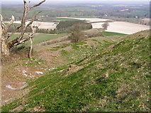 SU6022 : Medieval hollow way on Beacon Hill, Warnford by Jim Champion