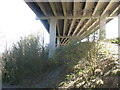 SH5371 : Below the upper, road, deck of Pont Britannia by Eric Jones